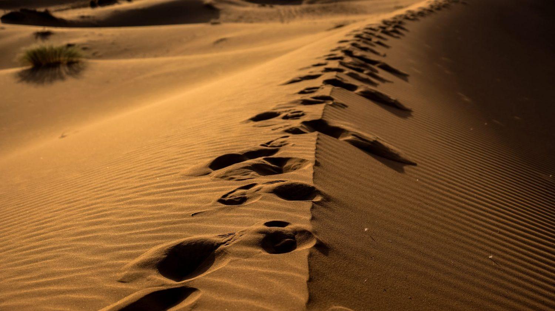 Steps By Faith